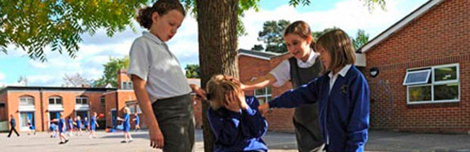 bullying y acoso escolar. Detección y prevención a tiempo. Elche Detectives