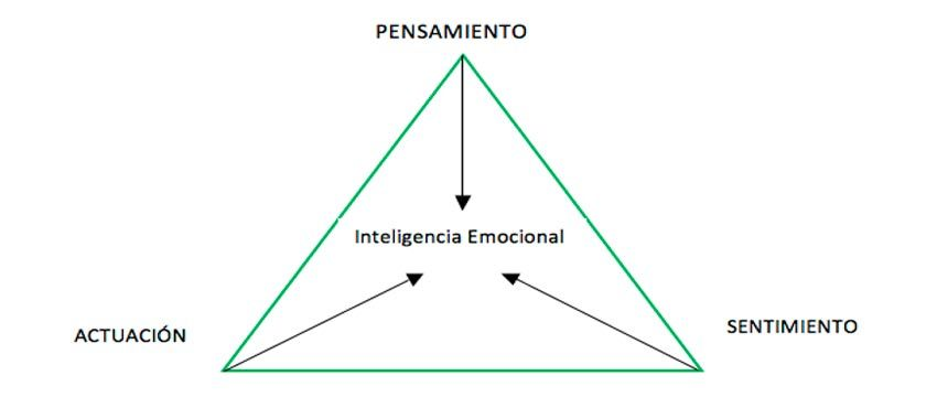 Inteligencia emocional. Diagrama de composición.