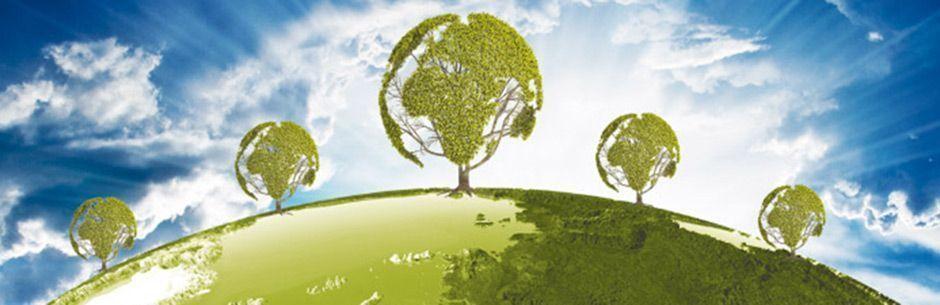 Protección Medio Ambiente. Servicios Detectives Elche
